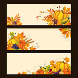 Autumn Banners with Ripe Vegetables, Swirls and Leaves, Vector Illustration