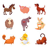 Domestic Animals and Birds Vector Illustrations Flat Design Set.