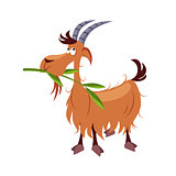 Goat Chewing Branch. Vector Illustration