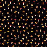 Mushrooms, seamless texture with autumn patternon a black background. Vector illustration