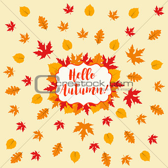 Autumn falling maple and oak leaves, pattern, isolated on white background