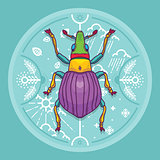Insect Beetle Bug Design Elements with Line Graphic