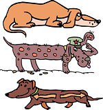 Set of funny slim dogs
