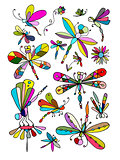 Dragonfly collection, sketch for your design