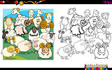 sheep characters coloring book