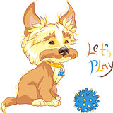 vector Funny shaggy puppy wants to play
