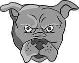 Angry Bulldog Head Cartoon