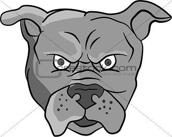 Angry Bulldog Head Cartoon