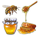 Jar of honey, bee, dipper and honeycomb on white background