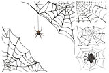 Web and black poisonous spider. Set Halloween accessory