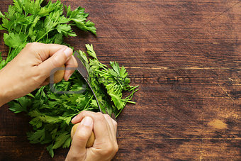 green natural organic parsley on a wooden table