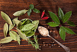 Spice and condiments wooden background.