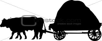 agricultural farm animals bulls a cart