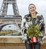 happy woman with Christmas tree in front of Eiffel tower in Pari