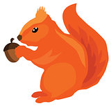 vector squirrel with acorn