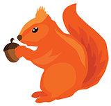 vector squirrel with acorn