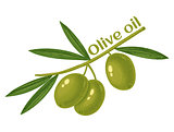 green olives for oil