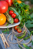 vegetables and greens in a garden
