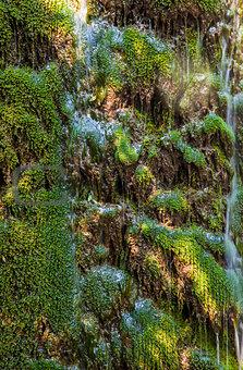 waterfall background green grass