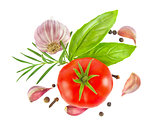 Ripe fresh tomato with herb and garlic,