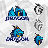 Creative dragon logo template. Sport mascot design. College league insignia, Asian beast sign, Dragons illustration, Football poster.