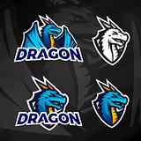 Creative dragon logo concept. Sport mascot design. College league insignia, Asian beast sign, Dragons illustration, School football team vector on dark background