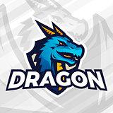 Dragon on shield sport mascot concept. Football or baseball patch design. College league insignia.