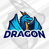 lDragon sport mascot. Football or baseball logotype. College league insignia, School team vector