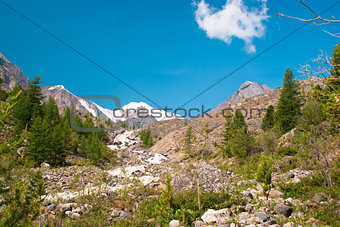 At the foothills of Aktru glacier, Altay mountaind