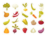Ecological farming production classical vegetables icons set isolated on white background. vector illustration in retro style