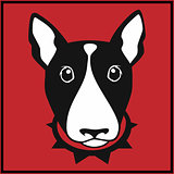 Vector bull terrier head