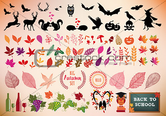 Autumn icon set, vector design elements