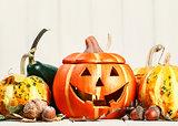 Halloween holiday still life happy scary pumpkin jack-o-lantern