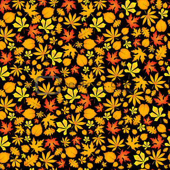 Autumn falling maple and oak leaves, seamless pattern on black background.