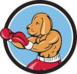 Dog Boxer Fighting Stance Circle Cartoon
