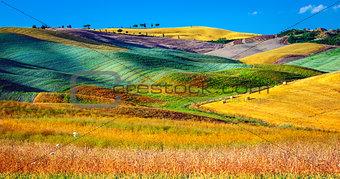 Beautiful agricultural landscape