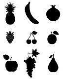 fruit,vector icon