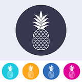 Single vector pineapple icon