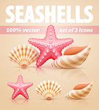 Set of summer sea shells and starfish icons