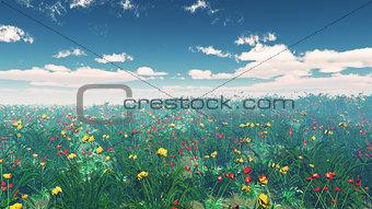 3D poppy field landscape