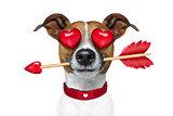 emoticon or  Emoji crazy in love