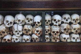 Skulls at Genocidal Center near Phnom Penh