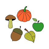 Cartoon Colorful Autumn Objects