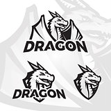 Dragon vector template. Sport mascot design. Football or baseball illustration. College league insignia, Asian School team beast sign