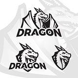 Dragon vector template. Sport mascot design. Football or baseball illustration. College league insignia, Asian School team beast sign
