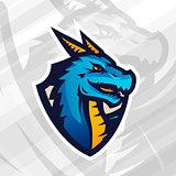 Dragon on shield sport mascot template. Football or baseball patch design. College league insignia, School team vector