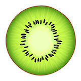 Vector illustrtion of the juicy half  the Kiwi