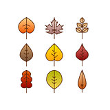 Vector autumn leaves red, orange yellow colors line art. Seasonal illustration