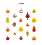 Vector fall leaves tree background