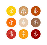 Vector autumn leaves icons set